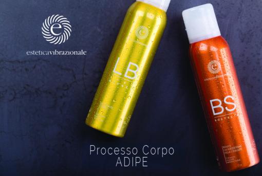 Processo corpo ADIPE 2