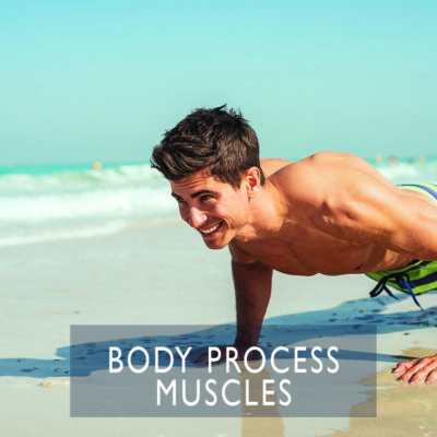 Body Process MUSCLES