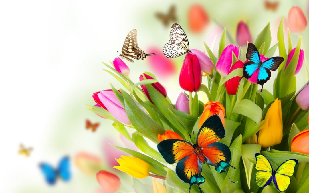 Depurazione è la parola chiave della Primavera